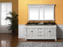 fancy narrow depth bathroom vanity inspiration home designs