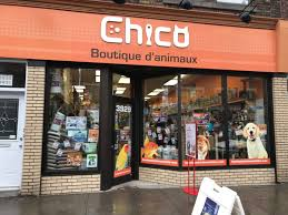 chico outlet boutique d animaux chico opening hours 3929 rue wellington