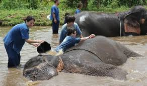 family travel packages vacation ideas places to