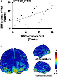 Part Of Brain That Controls Arousal Frontiers Early Brain Body Impact Of Emotional Arousal