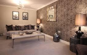 show home interior design design ideas fancy with show home
