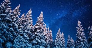 the winter solstice traditional medicine and a time for