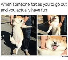 Have Fun Meme - 25 best memes about have fun meme have fun memes