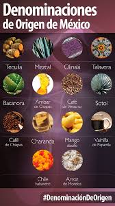 cuisine origin products with denomination of origin status geo mexico