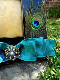 jaz up a picture frame love the peacock theme maybe this could