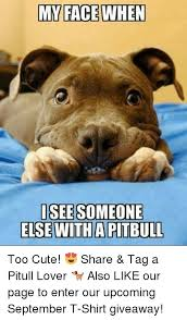 Too Cute Meme Face - my face when isee someone else witha pitbull too cute share