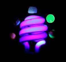 uv light bulbs nz uv light blacklight bulb perfect for standard bulb fittings