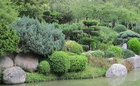 japanese garden ideas triyae com u003d backyard japanese garden plants various design