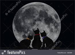 halloween full moon background cat silhouette illustration