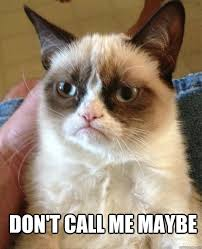 Call Me Maybe Meme - don t call me maybe cat meme cat planet cat planet