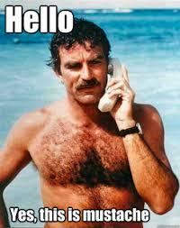 Mustache Ride Meme - selleck mustache meme quickmeme poster pinterest meme