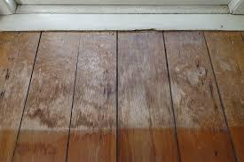 Powder Post Beetles In Hardwood Floors - historic homeworks by john leeke u2013 preservation trust of vermont