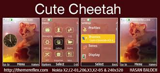 nokia 206 cute themes cute cheetah theme for nokia x2 00 x2 02 x2 05 x3 00 206 301