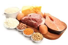 alimentazione ricca di proteine alimenti ricchi di proteine quali sono e come mangiarli