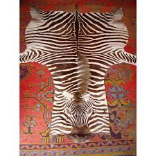 zebra skin rug in excellent condition