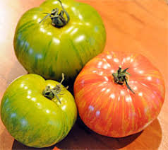 Types Of Patio Tomatoes Tomato Plants And Varieties How To Choose The Best Tomatoes To Grow