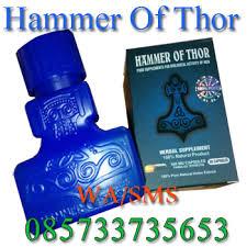 hammer of thor di kota surabaya ramuan alami