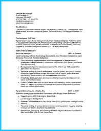 Technical Consultant Cv Incredible Formula To Make Interesting Business Intelligence Resume