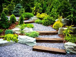 Home Center Decor Japanese Garden Styles Plants For A Japanese Garden The Tree