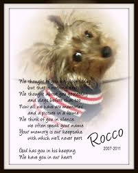 pet memorial poem we thought of you with today 47 flickr
