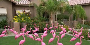 pink yard flamingo pink lawn flamingo plastic pink flamingos