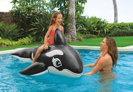 2017 children floats toys pool toys outdoor water sport whale ride