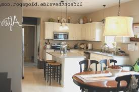 kitchen best kitchen cabinet painting cost home design popular