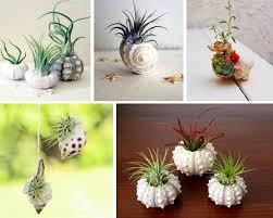 oggetti decorativi casa 50 idee di oggetti fai da te per la casa image gallery
