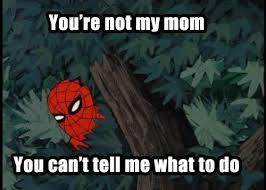 Retro Spiderman Meme - 144 best spiderman images on pinterest funny images funny