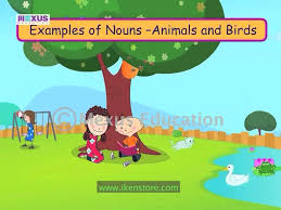 introduction to nouns youtube