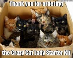 Cat Meme Ladies - 11 best pics of the crazy cat lady meme