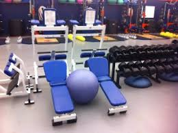 Leg Raise On Bench Stability Ball Leg Raise Varietytrainer Com