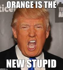 You Re Stupid Meme - trump orange meme orange is the new stupid jayjoca trump con