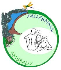 Tallahassee Zip Code Map by Sinkhole Tallahassee Naturally