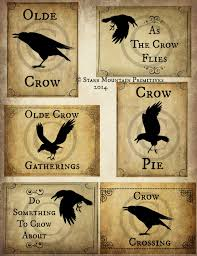 Primitive Kitchen Canister Sets Primitive Set Of 6 Olde Crow Sayings 3x4 Inches Each Jpeg