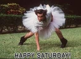 Funny Saturday Memes - happy saturday memes funny saturday night meme