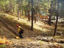 Idaho Fires Map Boise National Forest Home
