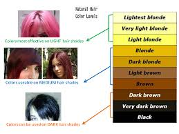 what type of hair can be used for crotchet braids funky tip 1 dyeing with light type hair colors funky streaks