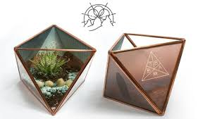 become one with nature with a between the buried and me terrarium