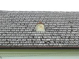 house textures tiles texture roof house moos
