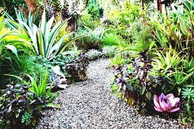 Edible Garden Ideas Best Of Edible Garden Design Tips From Vegetable Layout Ideas
