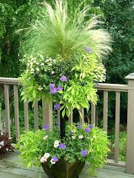 Plant Combination Ideas For Container Gardens What To Plant In A Container Garden A Container Overflowing With