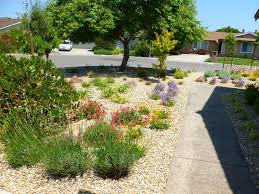 simple house design pictures simple front yard landscaping house design with various herbs
