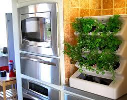 indoor vegetable garden design home outdoor decoration grow food