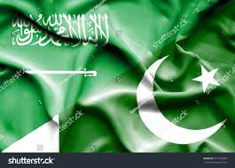 Pakistan Flag Picture Waving Flag Pakistan Saudi Arabia Stock Illustration 275172359