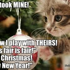 Grumpy Cat Memes Christmas - cat a logs giggl christmas memes pet kitty cute about litle pups