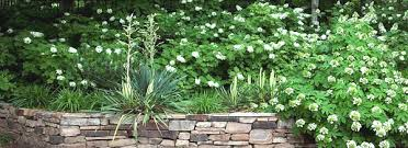Landscaping Borders Ideas Best Ideas In Landscape Edging Pictures Of Eye Catching