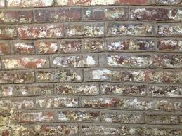 repointing a basement wall u2013 frugal living