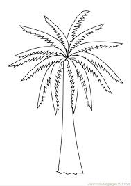 coloring pictures of a palm tree palm tree coloring pages s pages photo palm tree coloring page palm