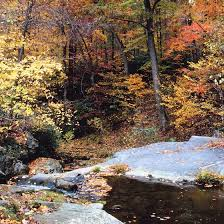 Pennsylvania wild swimming images Swimming holes near avondale pennsylvania usa today jpg